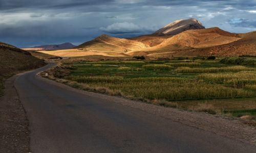 Zdjęcie MAROKO / Atlas Wysoki / Agoudal / Droga do Imilchil