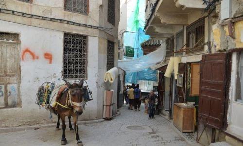 MAROKO / Fez / Fez / Medyna w Fez