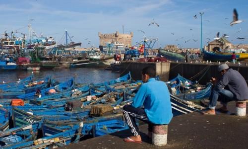 Zdjęcie MAROKO / As Sawira / Port / Co zrobić z tak pięknie rozpoczętym dniem...