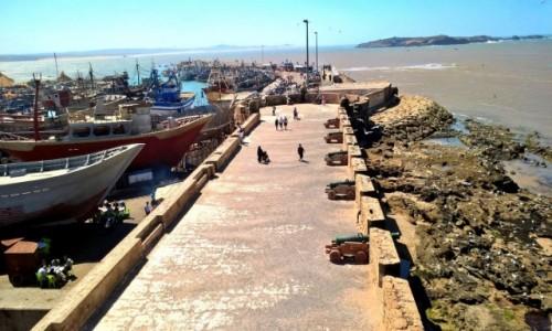 Zdjecie MAROKO / Zach.Maroko / Essaouira / Essa