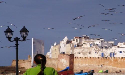 Zdjecie MAROKO / - / Essaouira / Essaouira