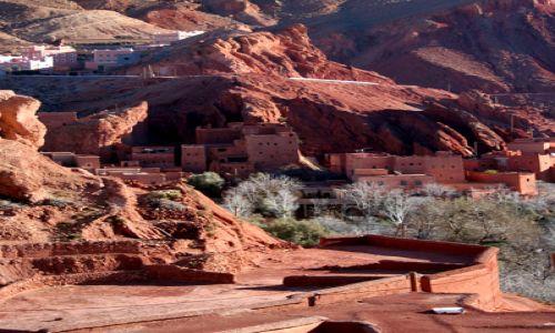 Zdjecie MAROKO / Maroko / Dolina Dades / Ogrody II