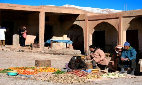 Zdjecie MAROKO / Maroko / Dolina Dades / zieleniak