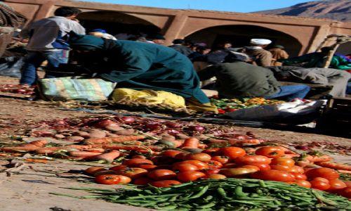 Zdjecie MAROKO / Maroko / Dolina Dades / zieleniak II