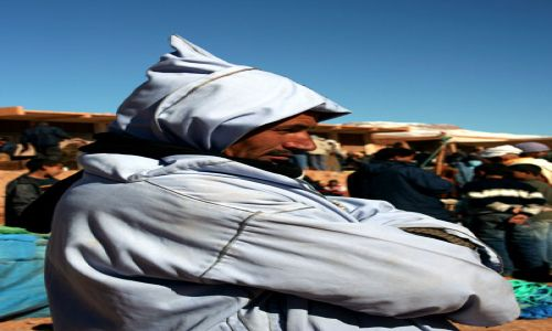 Zdjecie MAROKO / Maroko / Dolina Dades / obserwator