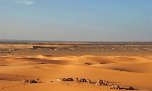 MAROKO / pustynia w płd-wsch. części Maroka / ERG CHEBBI / fatamorgana
