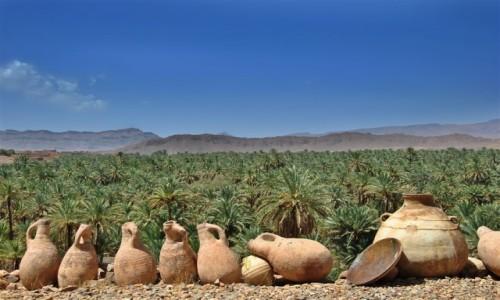 Zdjęcie MAROKO / Souss-Massa-Draa / dolina rzeki DRAA / w daktylowej oazie