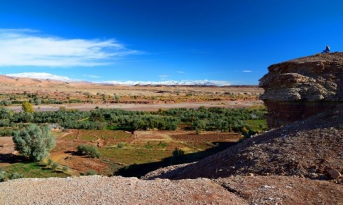 Zdjecie MAROKO / Południowe Maroko / Maroko / Magiczne połudn