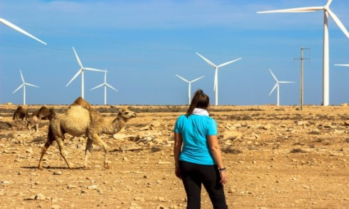 Zdjecie MAROKO / Zachodnia Sahara / Zachodnia Sahara / Miłe spotkania :)
