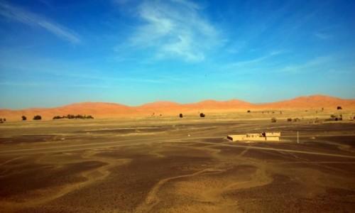 Zdjęcie MAROKO / Marzouga / Marzouga / Sahara w lutym