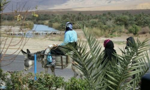 Zdjęcie MAROKO / Maroko / Maroko / Po pracy