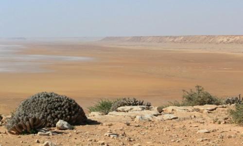 Zdjecie MAROKO / Sahara Zachodnia / Sahara / Pastelowa Sahara