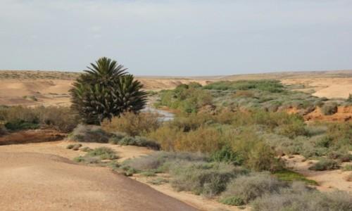 Zdjęcie MAROKO / Maroko / Aoreora / Przez uedzik do Aoreory