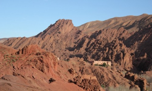 Zdjecie MAROKO / Maroko / Maroko / Koślawce