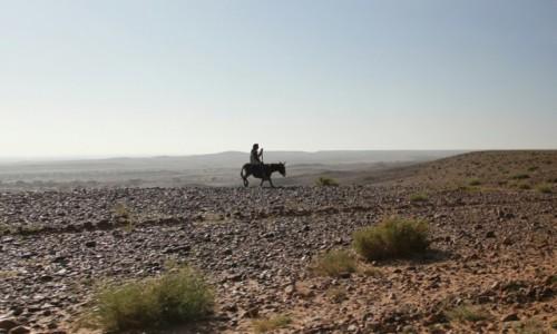 MAROKO / Sahara Zachodnia / Sahara Zachodnia / Wędrowca