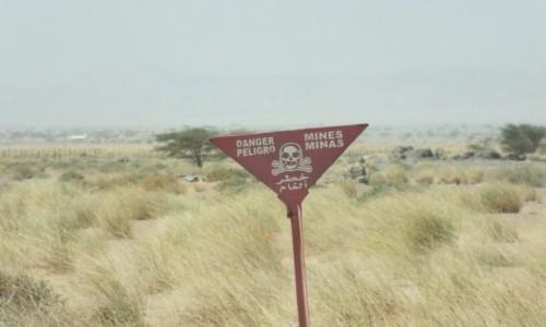 Zdjęcie MAROKO / Sahara Zachodnia / Sahara / Uwaga