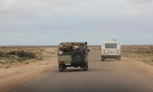 Zdjecie MAROKO / Sahara Zachodnia / Sahara Zachodnia / Zadowolone turystki