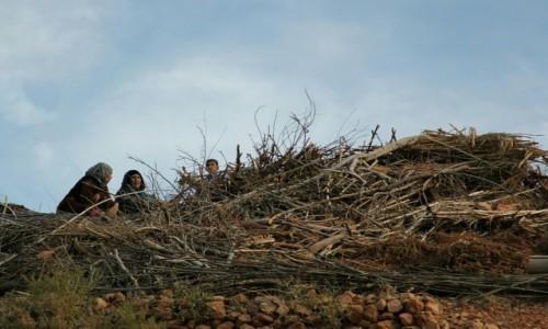 Zdjęcie MAROKO / Maroko / Maroko / W gnieździe