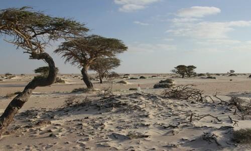 Zdjecie MAROKO / Sahara Zachodnia / Sahara / Urodziny pod gołym niebem