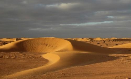 Zdjecie MAROKO / Sahara Zachodnia / Sahara / Po piaskach Sahary