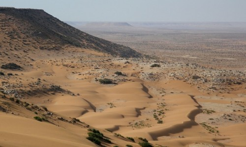 Zdjęcie MAROKO / Sahara Zachodnia / Sahara / Pocztówka z Sahary