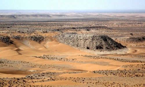 Zdjecie MAROKO / Sahara Zachodnia / Sahara / Pocztówka z Sahary