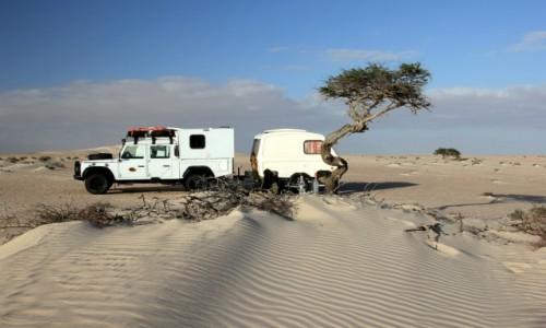 Zdjecie MAROKO / Sahara Zachodnia / Sahara  / Piłeś,nie jedź