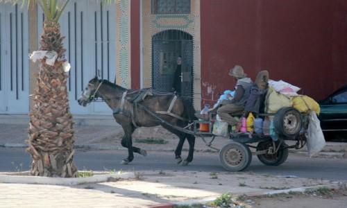 Zdjecie MAROKO / Sahara Zachodnia / gdzieś w trasie / Od drzwi do drzwi