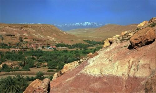 Zdjęcie MAROKO / Ouarzazate /  / Ait-Ben-Haddou  / Oaza