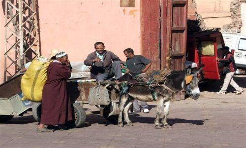 Zdjecie MAROKO / brak / Marrakech / Na placu w Marrakech