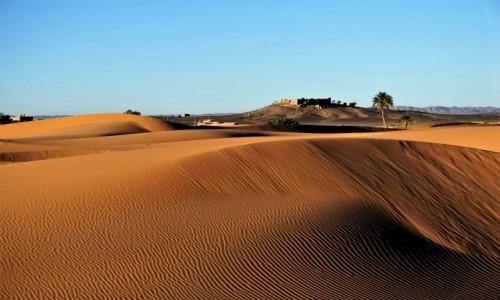 Zdjęcie MAROKO / Sahara Erg Chebbi / Merzouga / Prawie pustynia