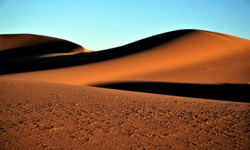 Zdjecie MAROKO / Sahara Erg Chebbi / Merzouga / Pustynia o świcie