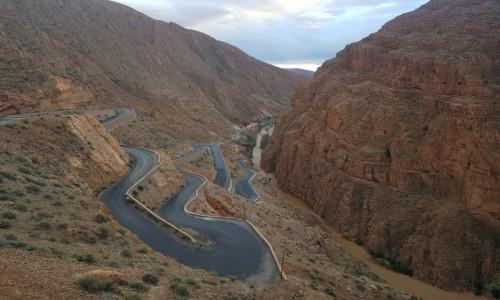 Zdjęcie MAROKO / Południowe Maroko / Wąwóz Dades / Zakrętasy