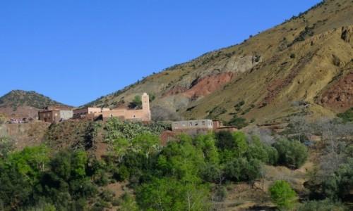 MAROKO / Południowe Maroko  / Gdzieś w drodze przez Atlas  / Na zboczu góry
