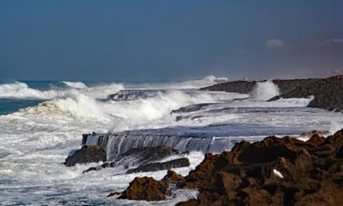 Zdjęcie MAROKO / Wybrzeże Atlantyku / gdzieś po drodze / Samotny obserwator