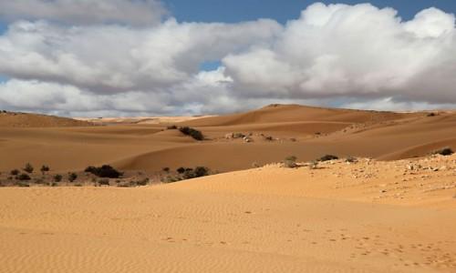 Zdjecie MAROKO / Sahara Zachodnia / okolice Al-Ujun / Kolory Sahary