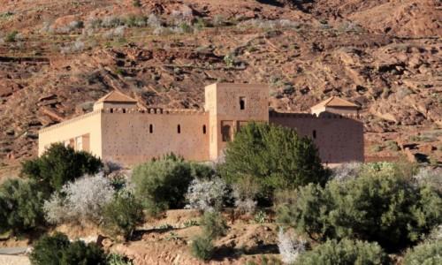 Zdjecie MAROKO / Maroko / gdzieś po drodze / Marokańskie widoczki