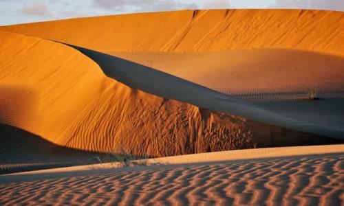 MAROKO / Sahara / Erg Chebbi / Sahara z bliska