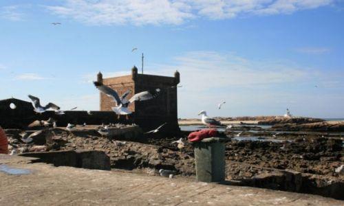 Zdjecie MAROKO / wybrzeże Maroka / Es-Sawira / Przekraczając bramę Es-Sawiry