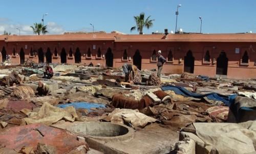 Zdjęcie MAROKO / Południe / Marrakesz / W garbarni skór, czyli każda praca jest lepsza