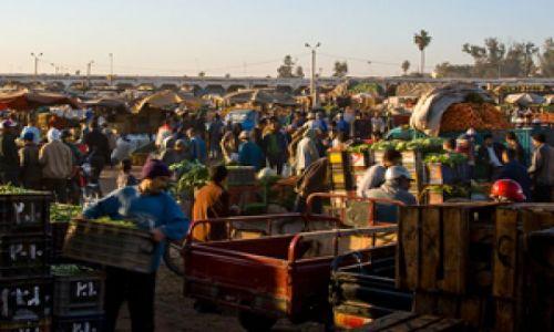 MAROKO / Agadir / Okolice Tafroute / Na Souku