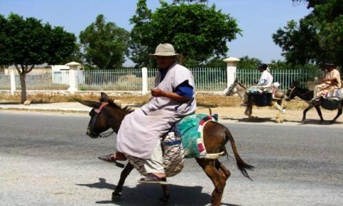 Zdjęcie MAROKO / trasa Agadir  As-Sawira / gdzieś na trasie / popularny środek transportu