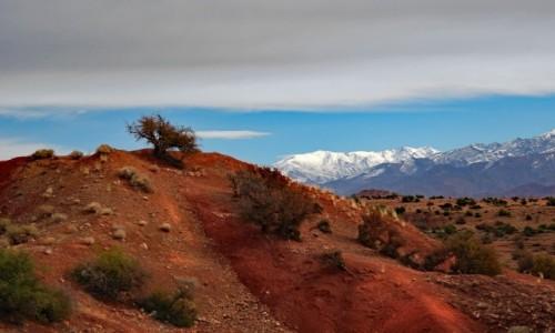 Zdjęcie MAROKO / Maroko / gdzieś po drodze / Kolor Maroka