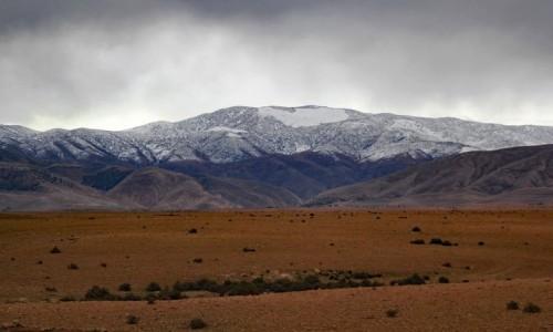 Zdjecie MAROKO / Maroko / gdzieś po drodze / Kolor Maroka