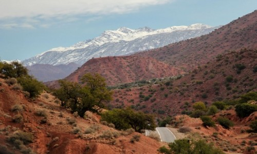 MAROKO / Maroko / gdzieś po drodze / Kolor Maroka