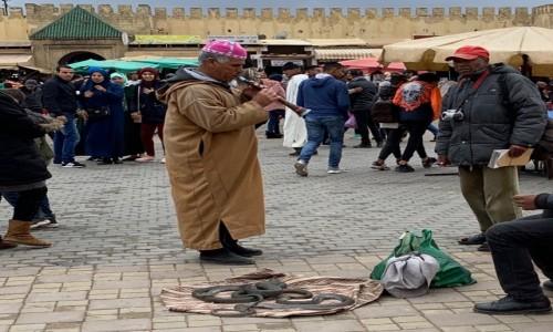 Zdjecie MAROKO / Meknes / Meknes / ...