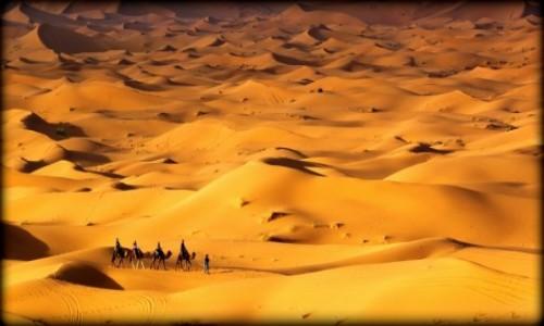 Zdjecie MAROKO / południe / Erg Chebbi / Maroko124