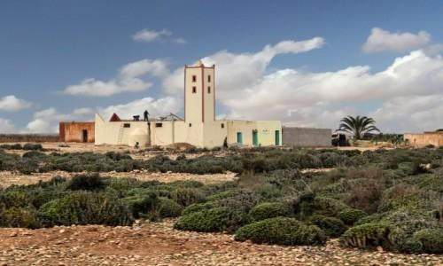 Zdjecie MAROKO / Maroko / gdzieś po drodze / Meczet na ulicy kaktusowej