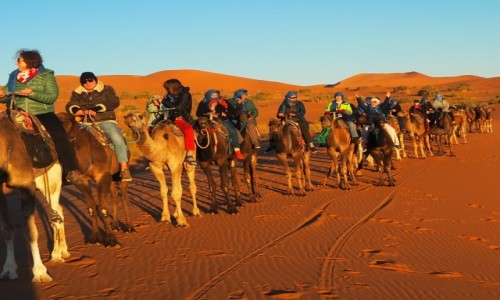 Zdjecie MAROKO / Sahara - Erfoud / Sahara - Erfoud / Maroko -Sahara