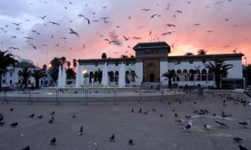 Zdjęcie MAROKO / Casablanca-Settat / Casablanca / O wschodzie słońca